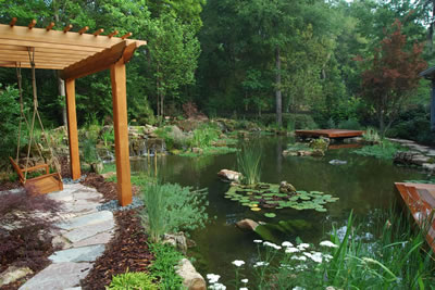 Koi Pond Gainsville Florida Complete Looking East